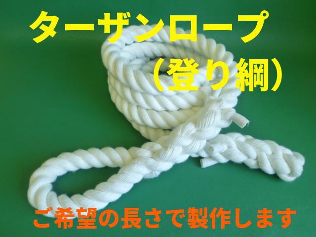 ターザンロープ(登り綱)